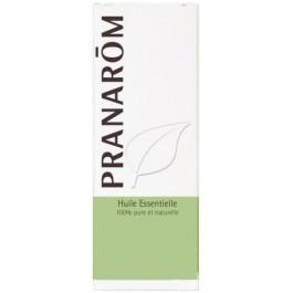 Aceite Esencial de Tuya 10ml. Pranarom